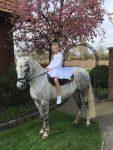 KommunionOnline - Kommunionfest mit Pferd